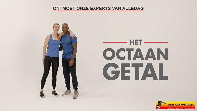 VLT-Shell-octaangetal-Personal-trainers